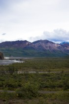 Mountains in Denali National Park